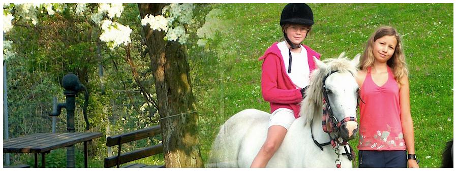 Ponys zum Anfassen & Ausreiten.